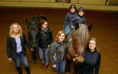 Zwei neue Pferde für die Reittherapie